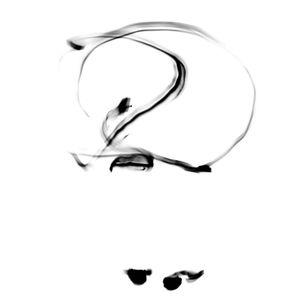 White crane spreads wings (Yang)