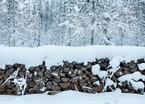 To cope with the freezing weather, buildings need to be heated twice a day, which keeps inhabitants busy chopping wood,