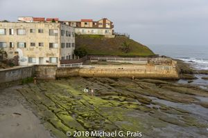 Apts for Rent -- Low Tide