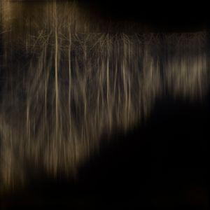 Licorice Black  — Axis Mundi