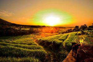 The great sunrise 3