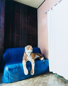 The Tiger, Brussels, 2014