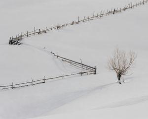 Farmland perimeter in Ciocanu Village. [January, 2018]
