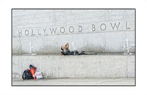 Hollywood Heat. 2014