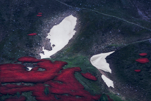 Alpine View - Melting Snow #29 (2020)