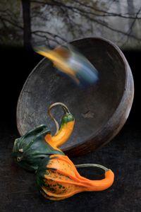 Gourds © Olivia Parker, 2011