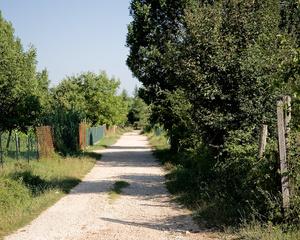 Ciociaria Orchard