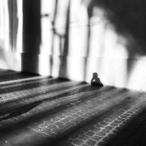 L'ardeur du soleil fait mieux apprécier le plaisir d'être une ombre.