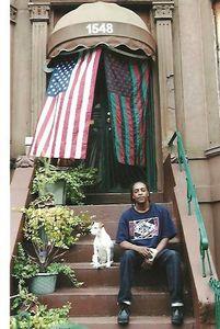 Crown Heights, Brooklyn 2011