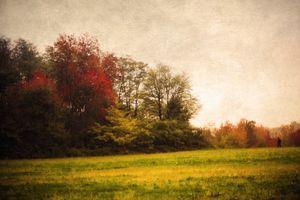 Memories of trees .7