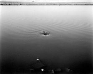 Whirlpool, Sunnyvale Wetlands, CA