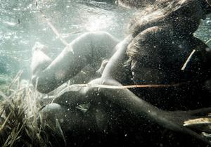 The Renaissance of luminous creatures - Atlaua & Delpriandea