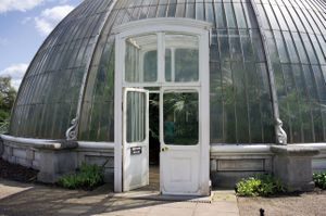 'Nest of Gladness' - Palm House, Kew Royal Botanic Gardens, Richmond, Surrey, U.K. © Mireille Schellhorn 2012