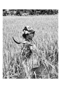 Bali Reaper in Bali