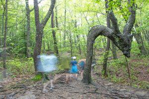 Cherokee Trail Marker