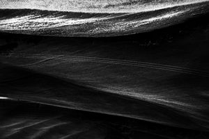 © Roberta Nozza
