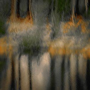 Moonlight on the Pond