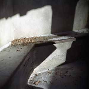 """From the series """"Hermitage"""""""