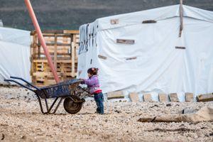 A little girl and a wheelbarrow