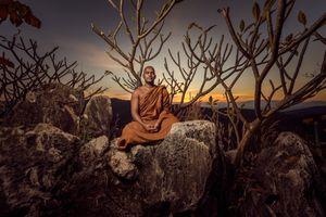 Nyana meditating under a tree