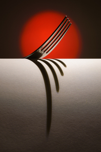 The Fork #7
