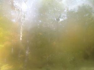Oct 18  10:56am