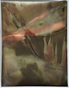 "Room Study No. 38, 2013, unique silver gelatin skiagram + chemigram, 14""x11"""