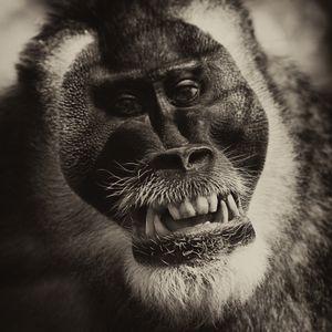 Katanga, smiling