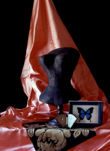 Still Life with Leigh Bowery's Butterfly  (For Mr. Pearl), Studio, Paris