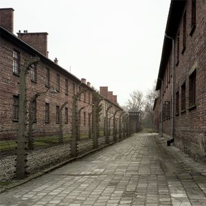 Electric Fence and Prisoners' Barracks (right) and SS Administration (left), Auschwitz-Birkenau Memorial and Museum
