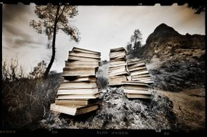 The Books   © Seán Duggan