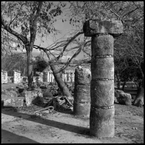 Columns - Chichen Itza