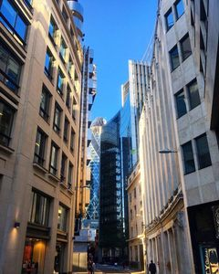 A Glimpse Of The Gherkin