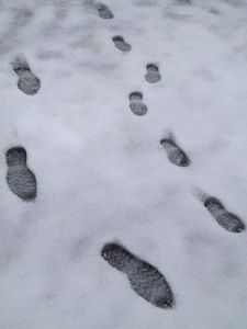 Steve and the little one's footsteps walking in the winter wonderland