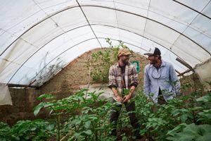 Adam Stieglitz and Aaron Ebner inspect a greenhouse at a school in Choquecancha