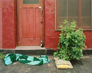 Brooklyn, New York © Patrick O'Hare