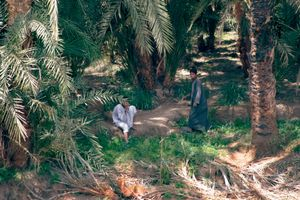 Life along the Nile 008