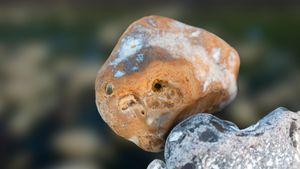 Stones&Faces 02