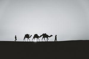 Sahara Sihlouette