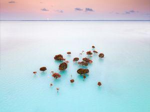 King Tide, Zanzibar, Tanzania