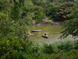Rowboat View