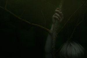Imago woods - Jenicek
