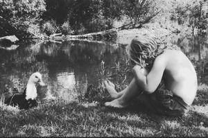 ducks in the creek.