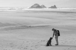 Friendship on a windy Frisco beach