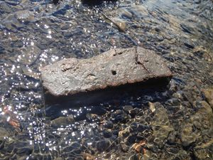 Orphan Brick - In the shallows of the Hudson
