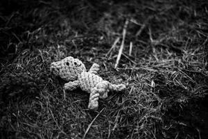 Bear (Found Object)