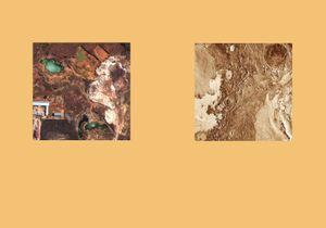 Earth Herbarium, Part III © Evgeny Molodtsov