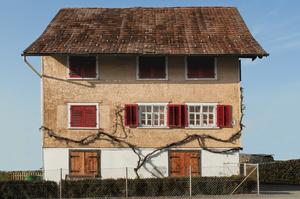 Dornbirn Houses #4  / 2013