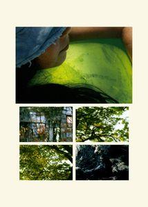 N°73 - Passage - Vert d'étang - 2008.