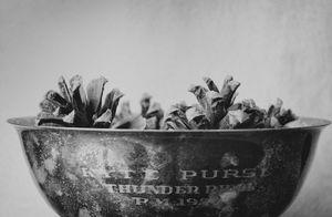 """""""Trophy"""" © Lisa Blair"""